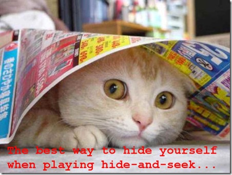 Funny Pictures: Let me show you how to hide!
