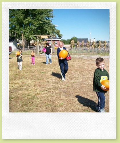 pumpkin patch 044