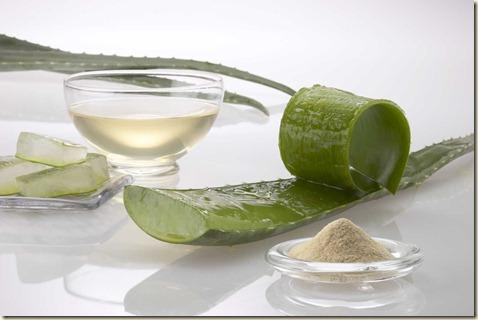 remedios caseros para el ace-plantas-aloe vera