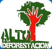 deforestacion