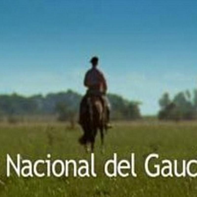 Día Nacional del Gaucho
