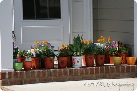flower beds 003