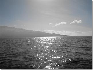 Maui Snorkeling_02 (1) (Medium)