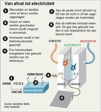 urinegas
