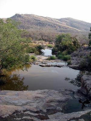 Ranthambore National Park in Rajasthan, India