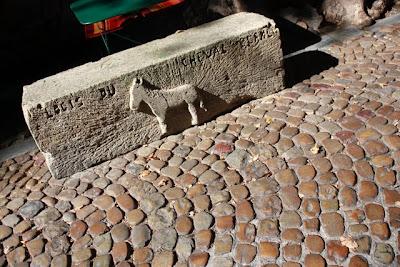 Avignon Bench