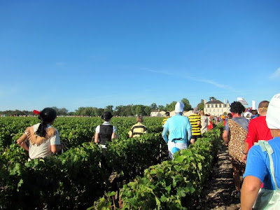 Runners in the vineyards during the Medoc Marathon in France