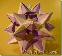 Origami 161
