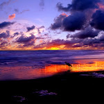 Beautyful Landscape (13).jpg