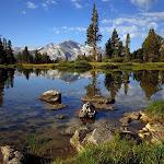 Beautyful Landscape (26).jpg