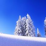 Beautyful Landscape (3).jpg