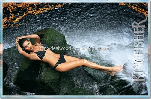 kingfisher_calendar_2011-c