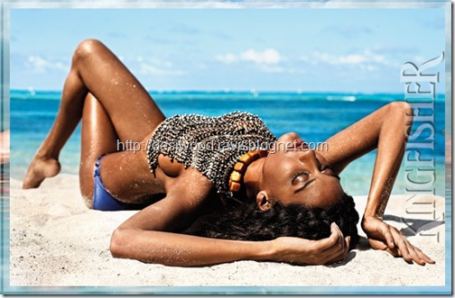kingfisher_calendar_2011-e