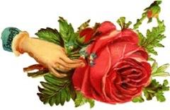 constancy-hand