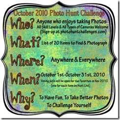 Oct2010-photohunt-badge-475x475