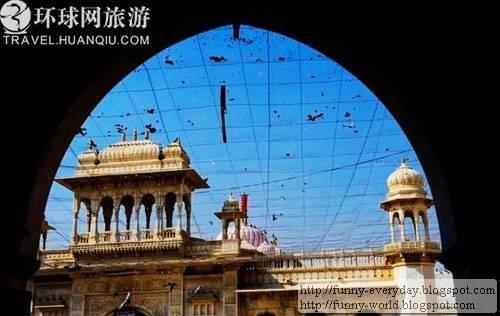 Karni Mata Temple005