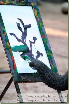 Elephants creativity paintings (2)