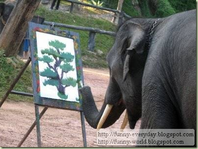 Elephants creativity paintings (4)