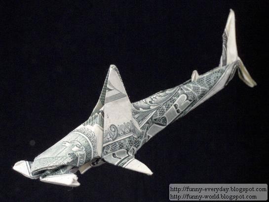 One_Dollar_Hammer_head_Shark_by_orudorumagi11_thumb