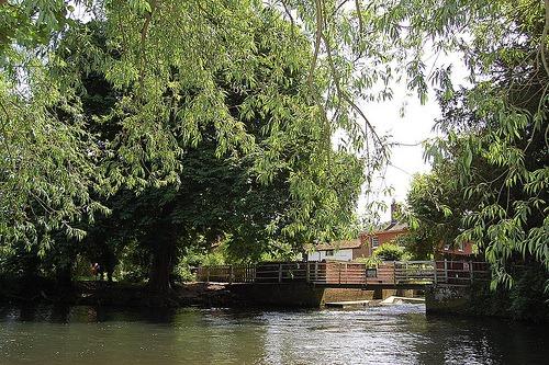Shotesham Park