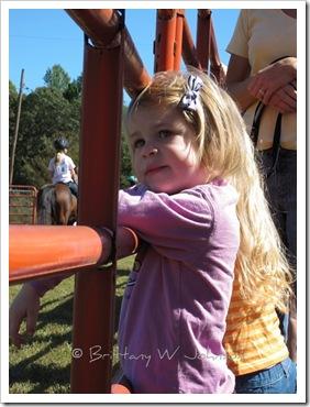 Horse Show Ava 1