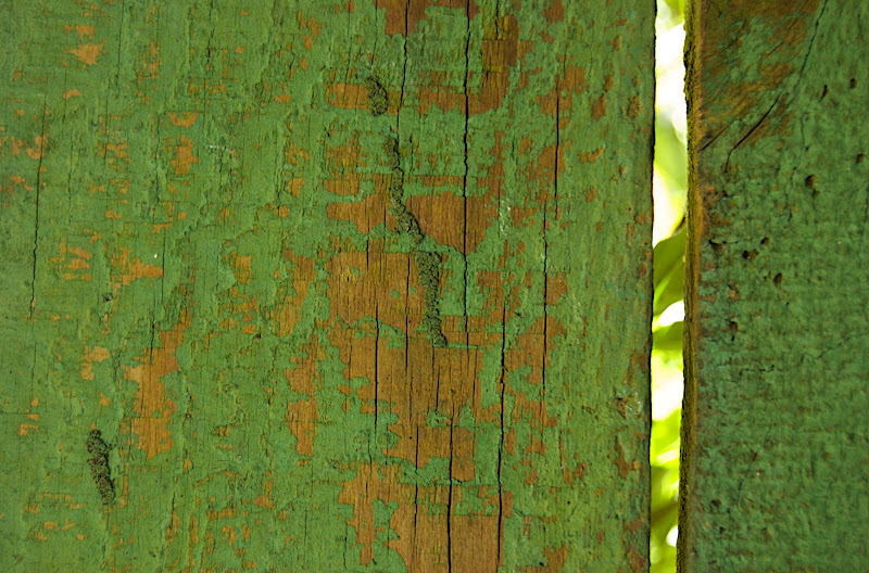 Old Fence #3