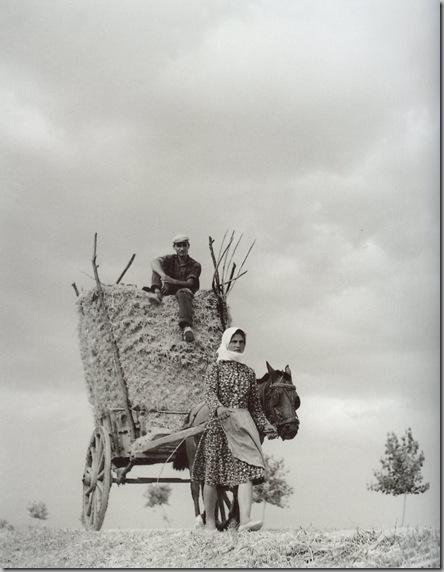 Γυναίκα οδηγεί κάρο φορτωμένο με σανό… και τον άνδρα της