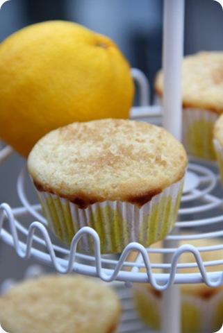 Tuscan Lemon Muffins 4