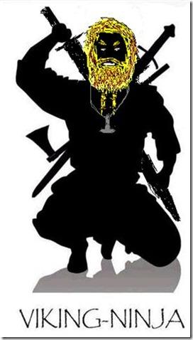 viking ninja5