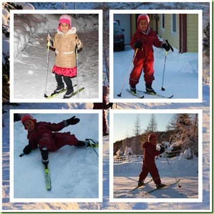 Ski2page
