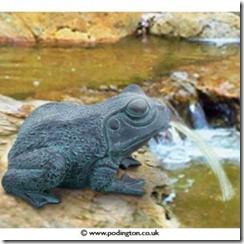 BER0546-frog-pond-spitter