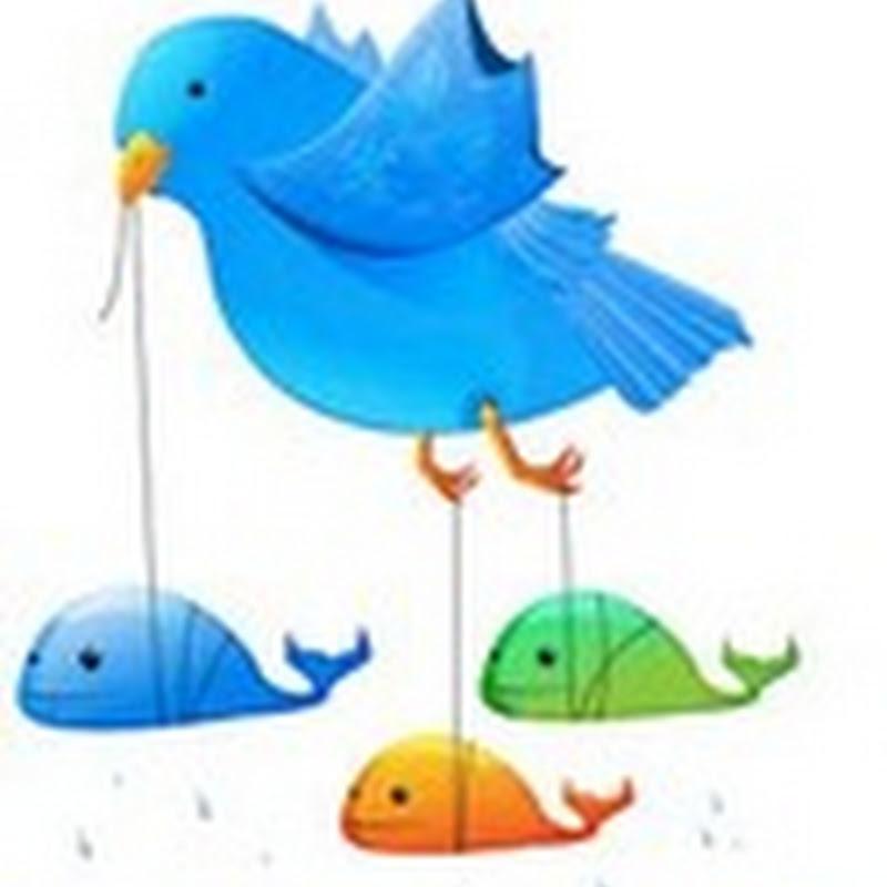 Como recuperar conta no Twitter