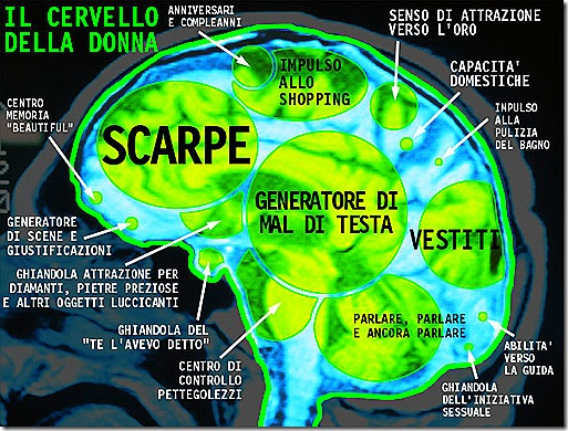 cervellodelladonnaks8
