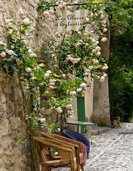 seguret-roses