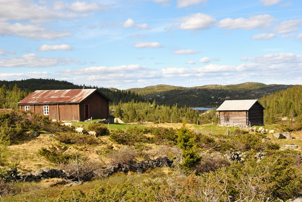Blåfjell 060