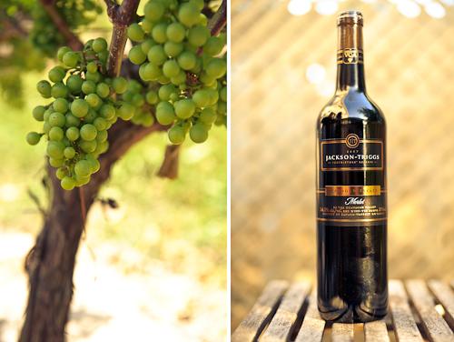 Jackson Triggs wine.jpg