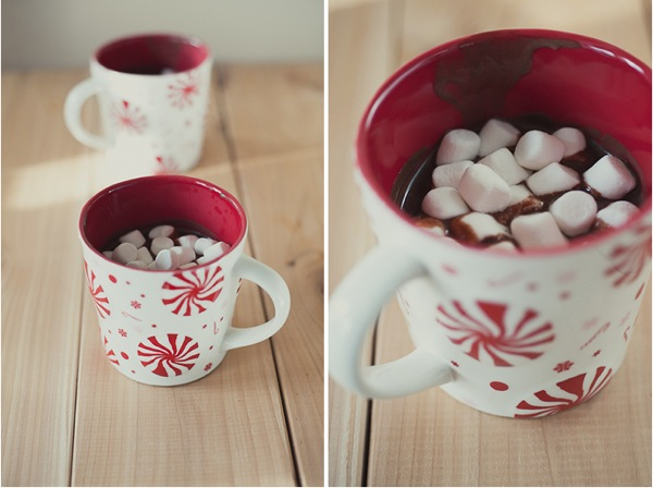 Hot cocoa and marshmellows.jpg