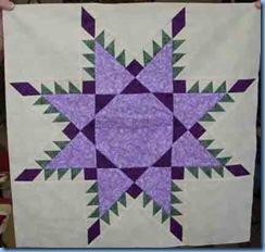 0309-Purple-Feathered-Star