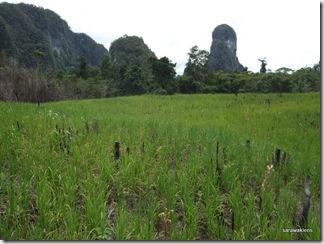 limestone_hills_of_Tebakang 3