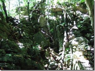 limestone-outcrop 2