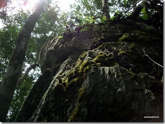 Limestone_hill_climb_091121_4