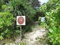 Teluk_Limau_trail_Bako_National_Park_71