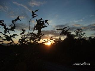 Maludam_Sarawak_03
