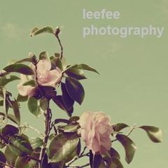 leefeephotography