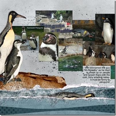 StLouisZoo-Penguins-1
