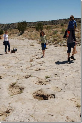 2009_0509_PicketwireCanyon-57