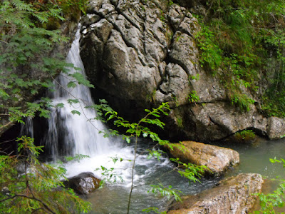 Bucegi - Cheile Zanoagei (Valea Ialomitei)
