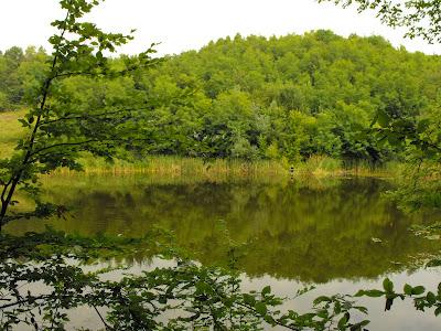 La pescuit. lacul