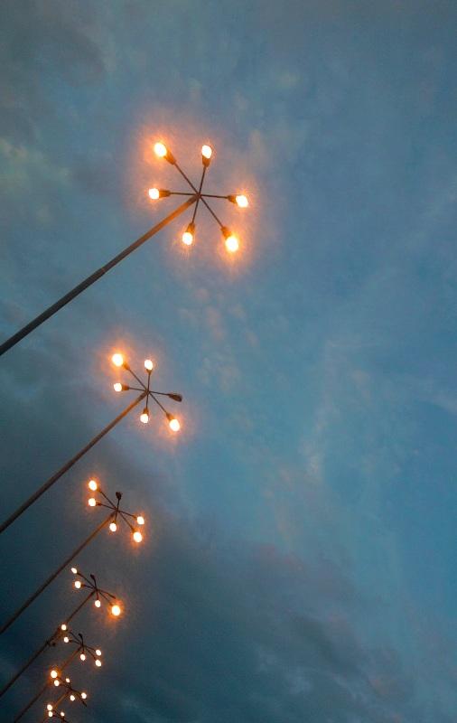 Bucuresti. Luminile inserarii