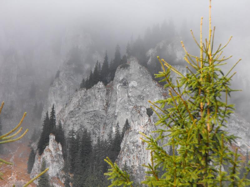 Piatra Craiului. Franturi de creasta prin ceata
